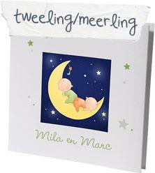 Tweeling Geboortegedichtjes En Geboortekaartjes Teksten